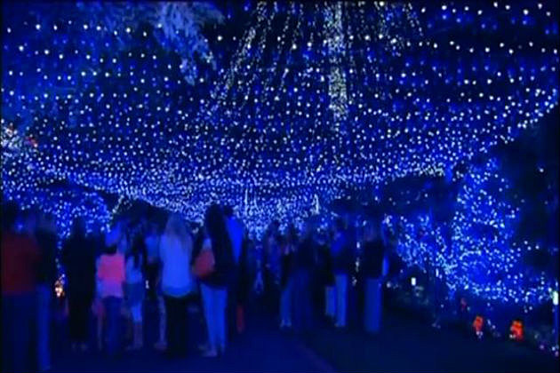 Record breaking Christmas lights