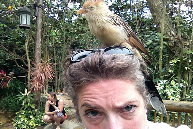 Bird on Lori's head at Discovery Cove aviary