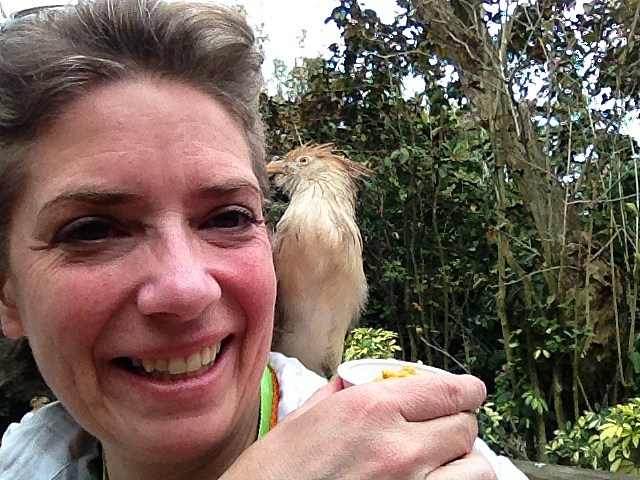 Bird on Lori's shoulder at Discovery Cove aviary
