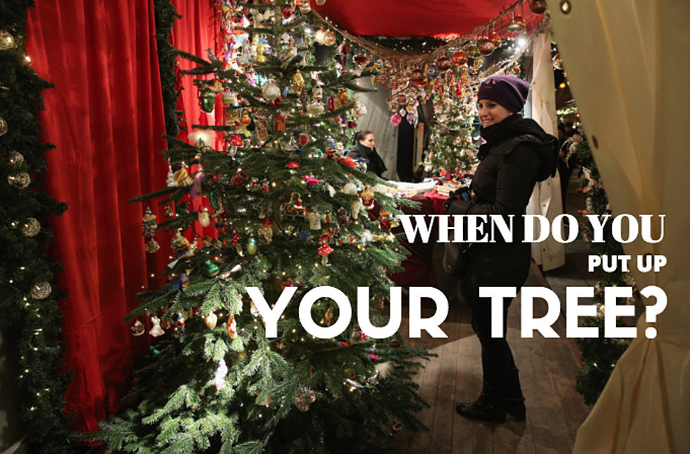 poll when does your christmas tree go up - When Do You Put Up Your Christmas Tree