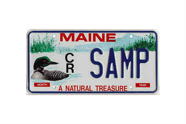 Loon Plate